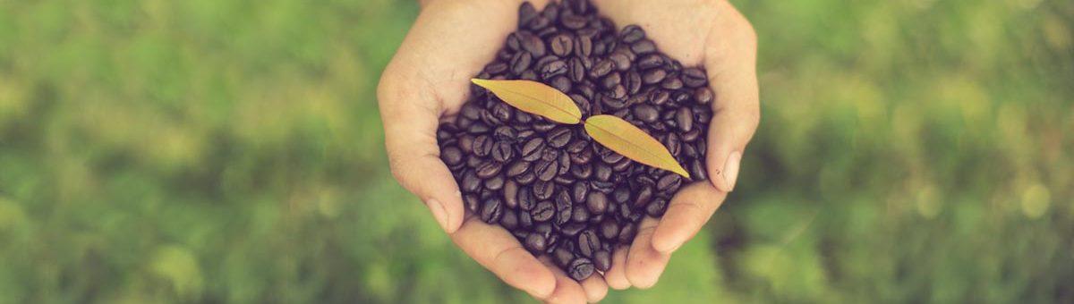 arabica robusa capsules de cafe compatibles nespresso espresso monte carlo