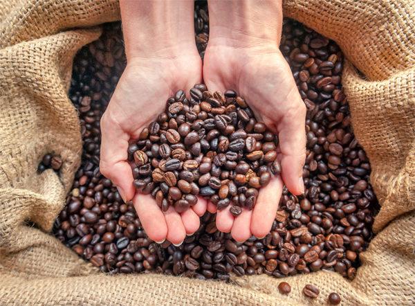 Torréfaction artisanale de grains de cafés Espresso Monte-Carlo